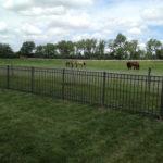 Aluminum Fencing Omaha