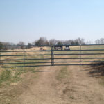 Farm Fencing and Gates