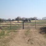Farm Fencing and Gates